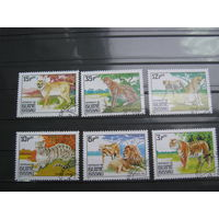 Марки - фауна, дикие кошки, Гвинея-Бисау, рысь, леопард, гепард, лев, тигр