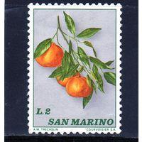 Сан-Марино. Ми-1032. Фрукты. Мандарины. 1973.