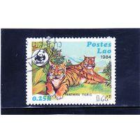 Лаос. Ми-707. Тигр (Panthera tigris). Серия: Всемирный фонд дикой природы.1984.