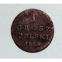 1 грош 1829 FH