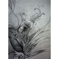 Фантастическая ботаника. Размер А3. Автор Крис