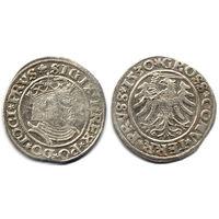 Грош 1530, Жигимонт Старый, Торунь. Остатки штемпельного блеска, R