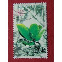 Индонезия 2002г. Флора.