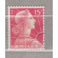 Французские колонии  Алжир 1955 год лот 1012