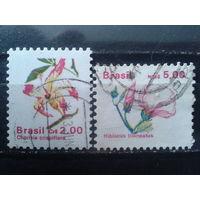 Бразилия 1989 Стандарт, цветы Полная серия