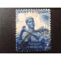 Египет 1953 стандарт, рабочий