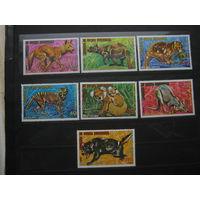 Марки - животный мир Гвинеи фауна 7 больших марок