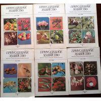 Приусадебное хозяйство-6шт за 1989г