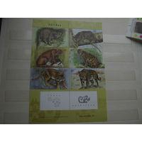 Марки - Аргентина. фауна дикие кошки блок 2001