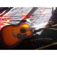 Чехол для  гитары .ис\кож.карман.