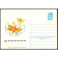 СССР 1979 флора лилейник