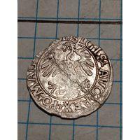 Полугрош 1559 года