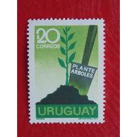 Уругвай. 1972г. Флора