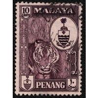 Кошки. Малайя, Пенанг. 1960. Тигр. Марка из серии. Гаш.