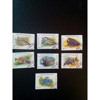 Мадагаскар  Декоративные (аквариумные) рыбки     7 марок