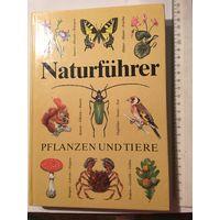 Справочник определитель растения и животные на немецком языке  Narurfuhrer pflanzen und tiere Издательство Германия 278 стр