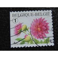 Бельгия 2007г. Флора.