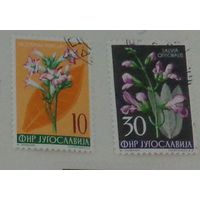 Цветы. Югославия. Дата выпуска:1955-09-24