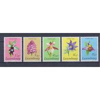[1463] Люксембург 1975. Флора.Цветы.Орхидеи.