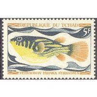 Чад рыба фауна