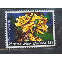 Папуа Новая-Гвинея 1982 г. Флора.