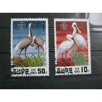 Марки - фауна, Корея, птицы, журавль, 6 шт.