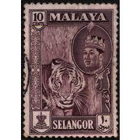 Кошки. Малайя, Селангор. 1961. Тигр. Марка из серии. Гаш.