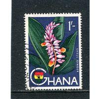 Гана. Альпиния