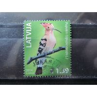 Латвия 2014 Фауна Птицы