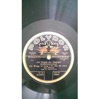 Две немецкие пластинки для патефона или граммофона