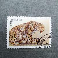 Марка Кыргызстан 1994 год. Леопард