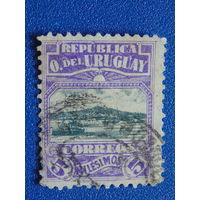 Уругвай 1919 г. Флора.