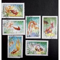 Вьетнам 1990 г. Золотые рыбки. Фауна, полная серия из 6 марок #0182-Ф1