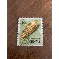 Кения 1971. Моллюски. Епископская Митра. Марка из серии
