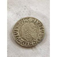 Пруссия, грош 1546 (2)
