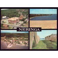 1981 год Неринга