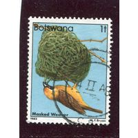 Ботсвана. Птицы 1т