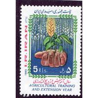 Иран. Год сельскохозяйственных культур