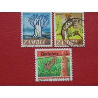 Замбия и Зимбабве 1985г.  Флора.