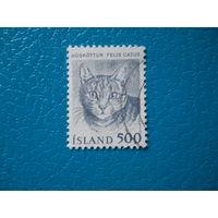 Исландия. 1982 г. Мi-583. Кошка.
