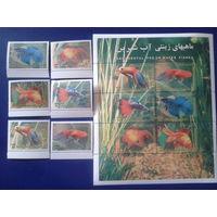 Иран 2004 аквариумные рыбки, комплект