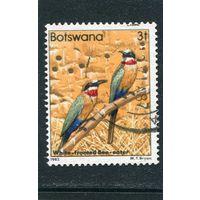 Ботсвана. Птицы 3т