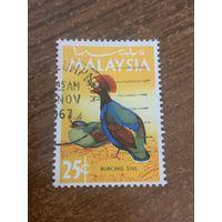 Малайзия. Птицы. Burong Siul. Марка из серии