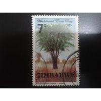 Зимбабве 1981 дерево