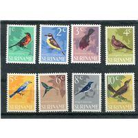 Суринам (автономная заморская часть Нидерландов). Птицы, вып.1966