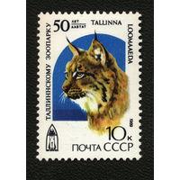 СССР 1989. 50-летие Таллиннского зоопарка. Рысь. (#6096) Полная серия. MNH