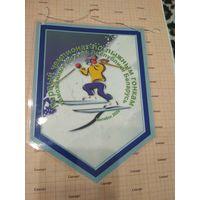 Вымпел Первый чемпионат по лыжным гонками таможенных органов РБ Витебск 2009