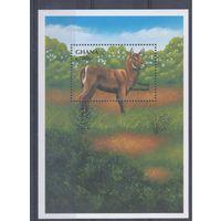 [10] Гана 2000.Фауна.Антилопа.  БЛОК.