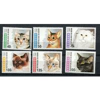 Бенин - 1995 - Кошки - [Mi. 668-673] - полная серия - 6 марок. MNH.