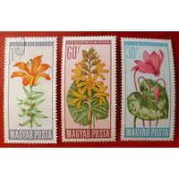 Венгрия. Цветы. ( 3 марки ) 1966 года.
